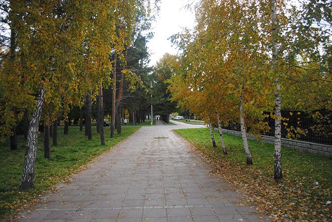 Места для прогулок в Новосибирске Нарымский сквер