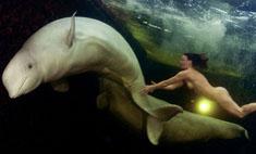 Это стоит увидеть: обнаженная девушка под водой с китами