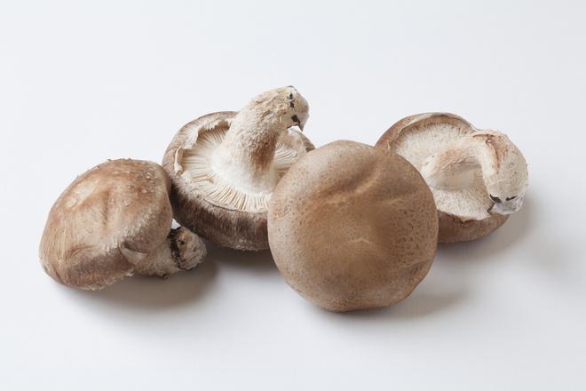 грибы при беременности