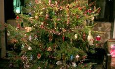 Влад Лисовец: «Будем наряжать елку в советском стиле»