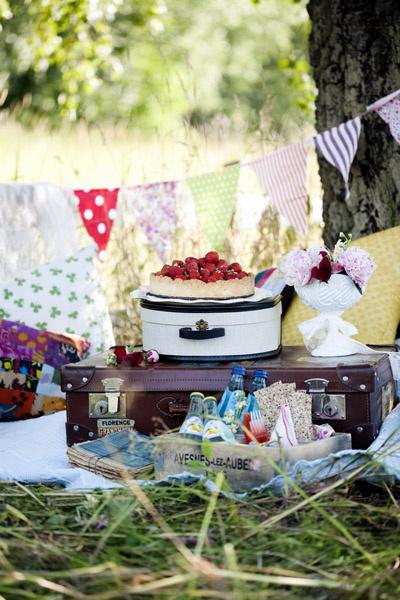 Пикник на природе фото