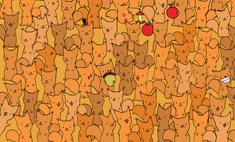 Тест на зоркость: найди мышку среди бельчат