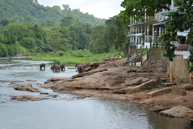 Туристическое агенство Мадагаскар Тула