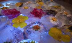 Секреты красоты: лед из отвара ромашки
