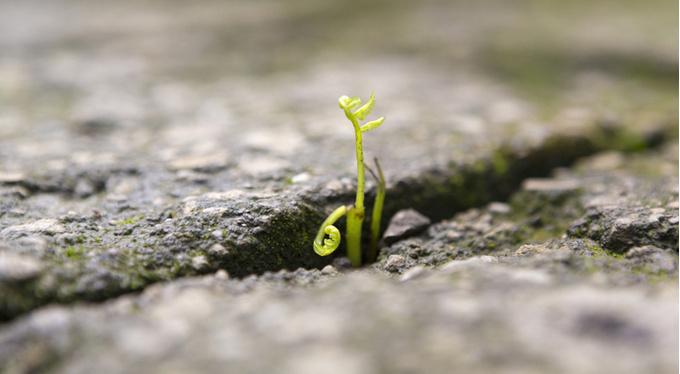 Кризис любого возраста: не преодолевать, а прожить