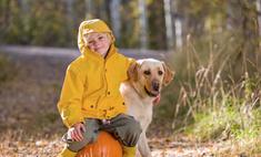 Собаки помогают детям получать пятерки