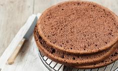 Печем вкусные бисквитные коржи: рецепты
