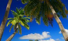 Куда поехать, если надоели Мальдивы