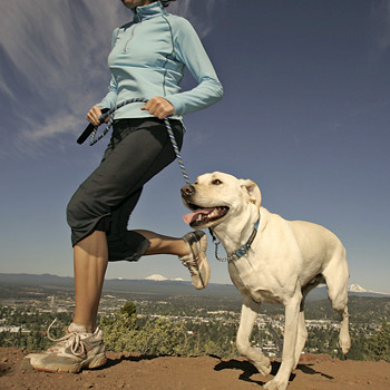 Важно, что по сравнению с бегом по тротуару, занятия трейл раннингом сжигают на 10 процентов больше калорий.