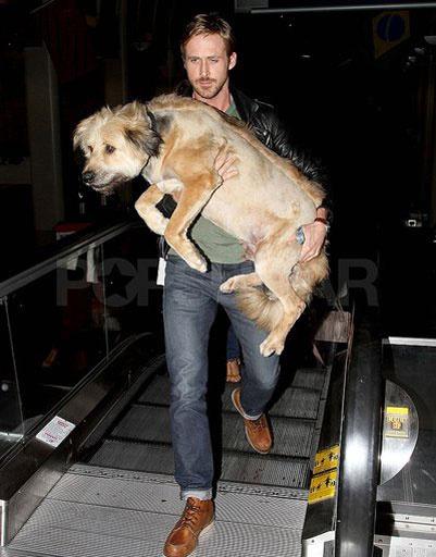 Райан Гоcлинг (Ryan Gosling)