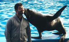 Михаил Галустян подружился с дельфинами