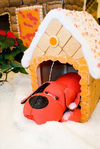 Трудно представить, но конура этого пса сделана из печенья и мармелада.