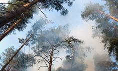 Борьба с лесными пожарами идет в Германии