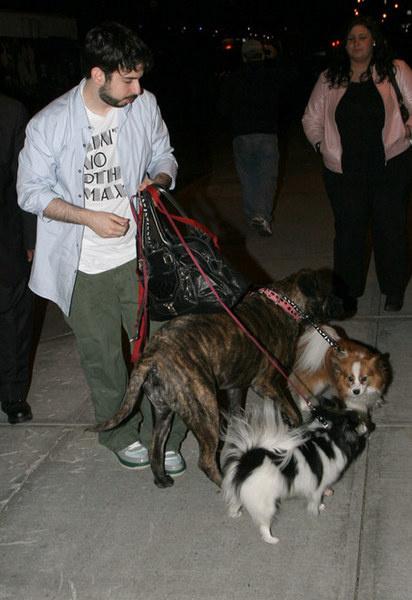Муж Кристины Агилеры, Джордан Брэтман, выгуливает звездный выводок собак