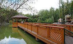 10 мест в Новосибирске, которые стоит посетить до конца лета