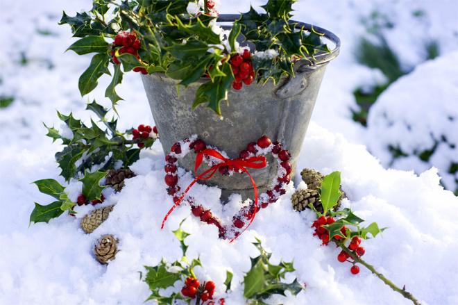 Замороженный рождественский венок