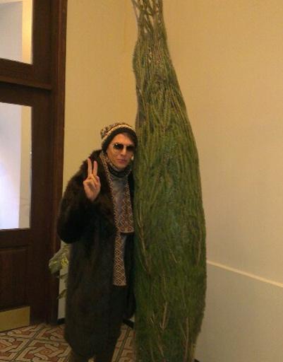 Влад Лисовец купил новогоднее дерево на елочном базаре