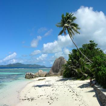 Сейшелы - это белый песок, пальмы и фантастический подводный мир.