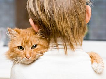 Домашние питомцы становятся настоящими друзьями своим хозяевам