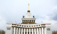 В Москве откроется крупнейший роллердром