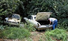 «Ферма трупов»: место, где изучают воздействие окружающей среды на мертвые тела