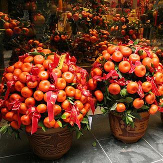Китайский новый год москва