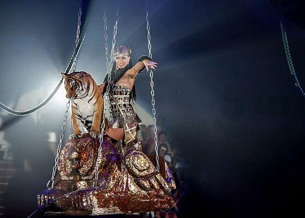 Принцесса цирка