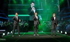 Звезды Евровидения-2015 дадут концерты в России
