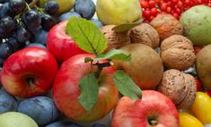 Осень для гурманов: сезонные деликатесы