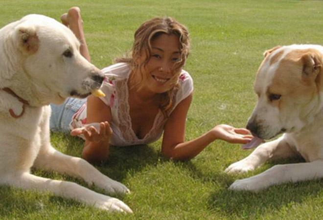Анита цой собаки фото