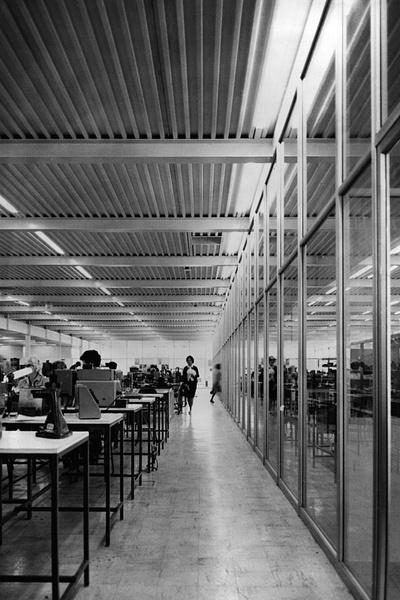 Проснулся знаменитым: первые проектызвезд архитектуры | галерея [4] фото [2]