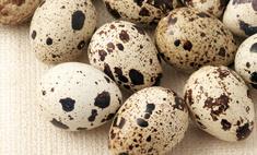 8 причин попробовать перепелиные яйца
