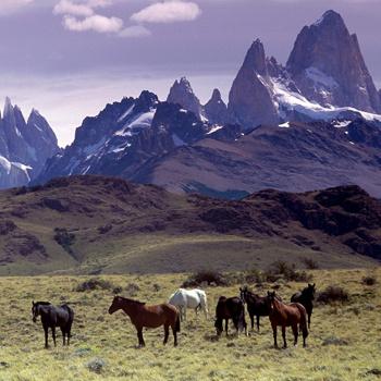 Главное богатство Аргентины – ее природа. В этой стране можно увидеть такие ландшафты, которые вам и не снились.