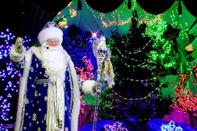 Афиша новогодние представления в ростове-на-дону 2014-2015, афиша новогодние елки для детей ростов 2015
