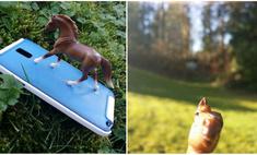 Девушка украсила чехол телефона лошадью, и вскоре обнаружила, что на всех фотографиях теперь лошадиная морда
