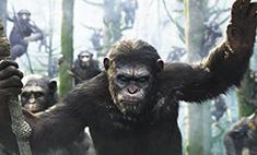 Кинопремьеры недели: вся власть – обезьянам!