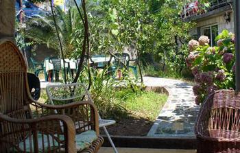 Хорошее дополнение к хостелу «Гиппо» - сад с плетеной мебелью и красивыми клумбами.