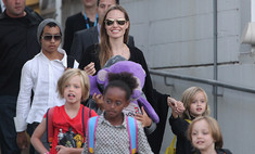 Анджелина Джоли собирается стать мамой в седьмой раз!