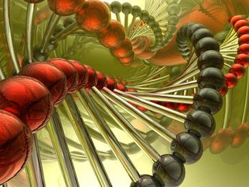 Молекулы ДНК