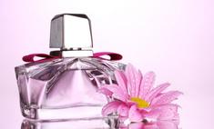 Зимние запахи будущего: ароматы-2014