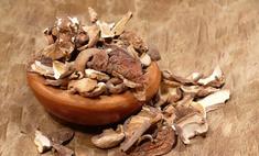 Грибная икра: готовим из сушеных грибов