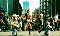 Собаки Путина и Обамы стали солистами группы Super Doggies