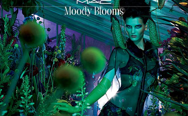 новая коллекция Moody Blooms