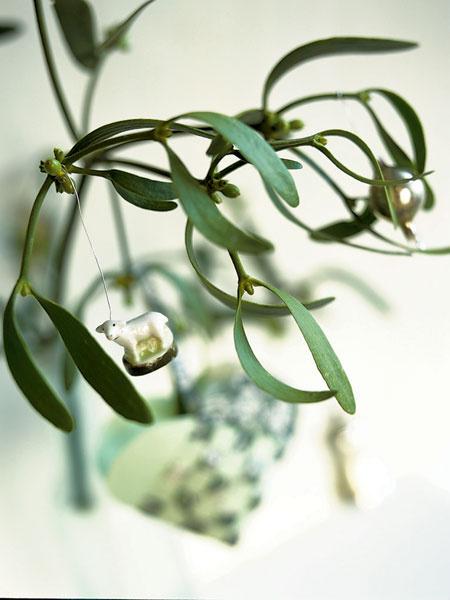 При желании можно нарядить не только елку, но и комнатные растения. На этой омеле висит свечка в виде барашка и елочный шар.