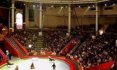 Российский цирк завоевал награды на фестивале в Монако
