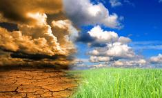 Российские регионы страдают от сильной засухи
