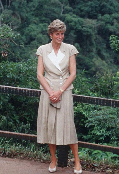 Принцесса Диана, 1991 год