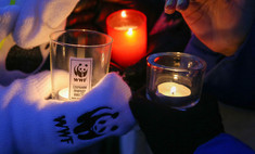 """В Меге покажут фильм об экологической катастрофе в честь акции """"Час земли"""""""