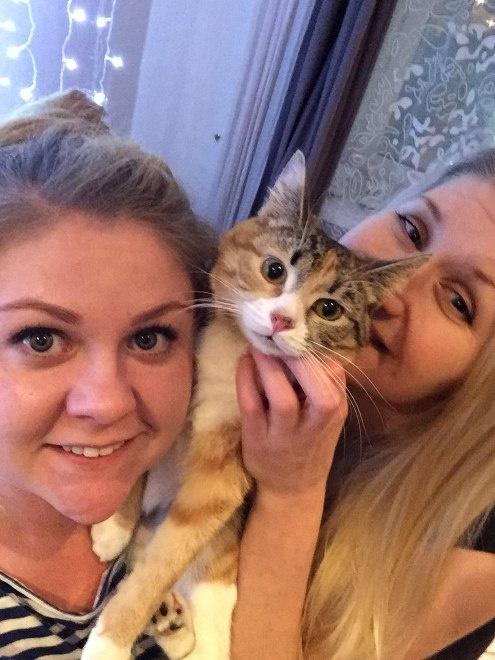 Реальные пацаны: актрисы ищут дом найденной кошке