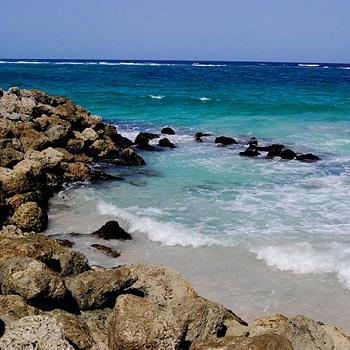 Барбадос называют «Маленькой Англией», потому что остров - бывшая колония Великобритании, где до сих пор бережно хранятся все британские традиции. А еще там есть заповедные места, где в условиях дикой природы сохранились уникальные виды тропических растений и животных.